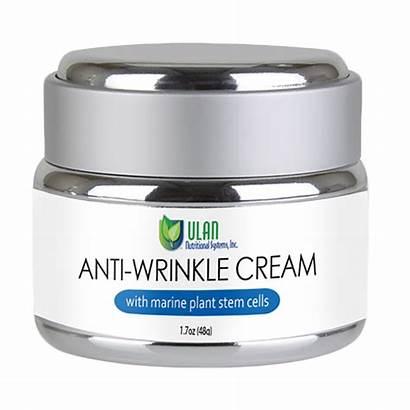 Cream Wrinkle Anti Stem Cells Marine Plant