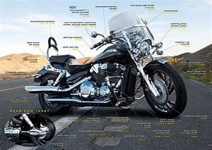 Honda Vtx 1300 Engine Diagram  Honda  Free Engine Image For User Manual Download