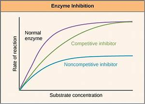 Enzyme Inhibition - Types Of Inhibition