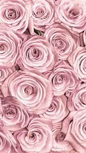 Rose Gold Wandfarbe : die besten 25 rose gold lockscreen ideen auf pinterest tapete telefon hintergrundbilder und ~ Frokenaadalensverden.com Haus und Dekorationen