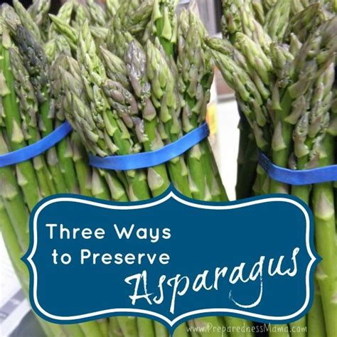 can i freeze fresh asparagus 3 ways to preserve asparagus chang e 3 preserve and asparagus