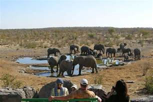 etosha wildlife safaris namibia africa large pictures and self drive visitor information plus