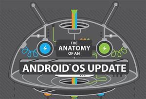 Awesome Infographic  Htc Shows Us  U201cthe Anatomy Of An