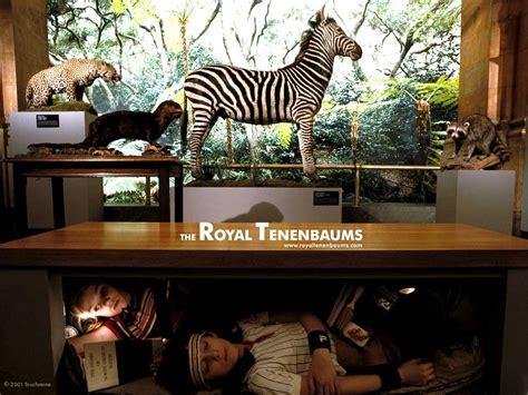royal tenenbaums  royal tenenbaums wallpaper