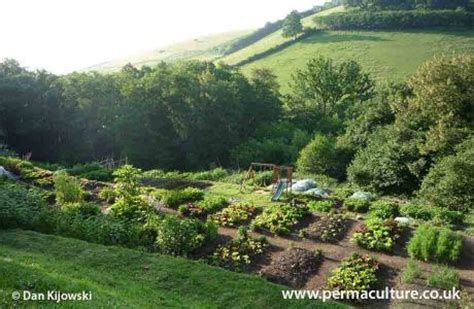 permaculture gardening creating   eco systems