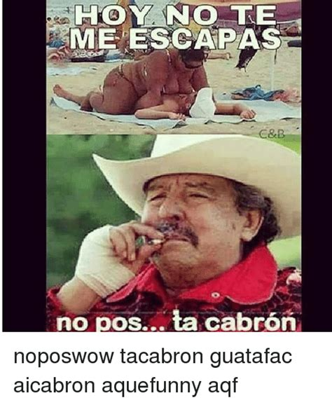 Pos Ta Cabron Meme - funny pos ta cabron memes of 2017 on sizzle