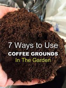 7 ways to use coffee grounds in the garden info you