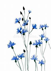 Many Blue Flowers On White Background Stock Illustration ...