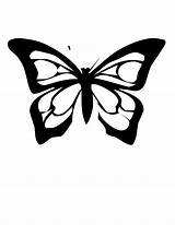 Butterfly Coloring Pages Stainglass sketch template