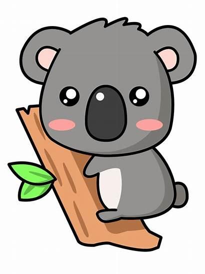 Koala Cartoon Clip Animals Drawings Domain Bear