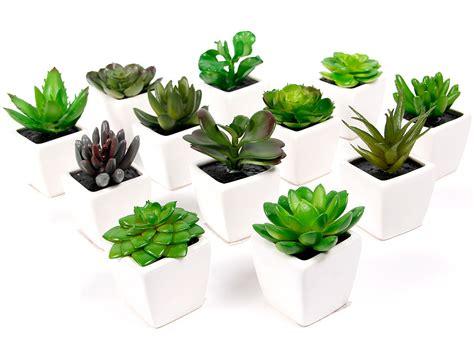 mini plante grasse plante grasse artificielle succulente cact 233 e en mini pot c 233 ramique 101342 d 233 coration de couleur