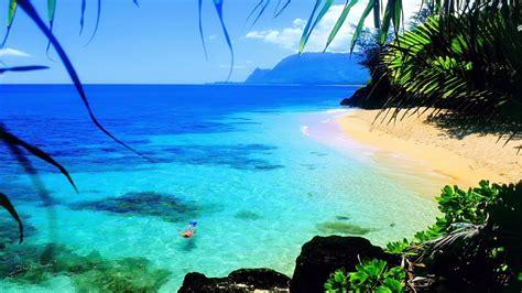 ocean hawaii beach beautiful hd wallpaper  laptop