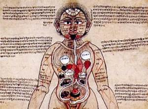 Ar Chart In Spanish India 39 S Ancient Indigenous Medicine Lays Path For Modern