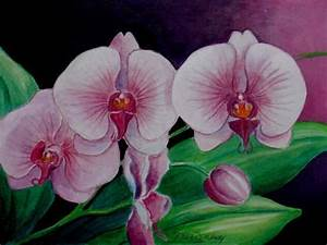 729 best Art - Watercolor orchids images on Pinterest ...