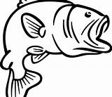 Bass Coloring Fish Fishing Rod Clipart Outline Printable Adults Colouring Clip Clipartmag Panda sketch template