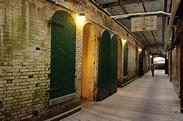 Alcatraz Island Prison Combination Tour Ticket with San ...