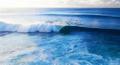 Hawaii Mar Gifs Cartoon Surf Mag Dope