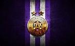 Download wallpapers Austria Vienna FC, golden logo ...