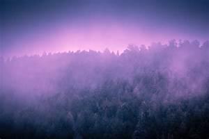 Purple Mountain Fog | Mabry Campbell Photo Blog  Purple
