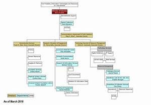 Organization Chart - Ucf Libraries