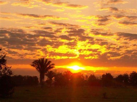 amanecer en los llanos orientales foto de bydaniel mi