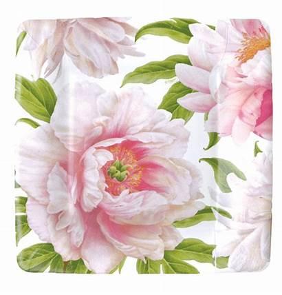 Blush Floral Pink Plates Salad Square Pack