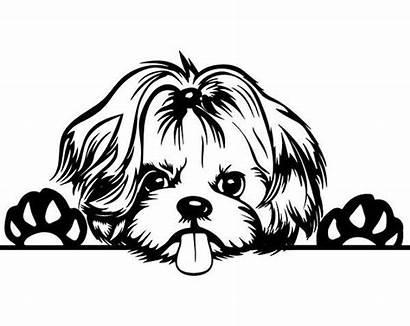 Shih Tzu Svg Yorkie Dog Puppies Puppy