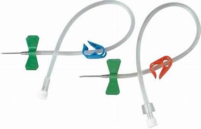 Fistula Needle Needles Av Flow Dura Blood