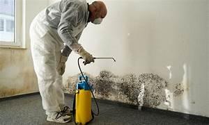 Schimmel An Den Wänden Was Tun : schimmel entfernen das m ssen sie bei befall tun das haus ~ Michelbontemps.com Haus und Dekorationen
