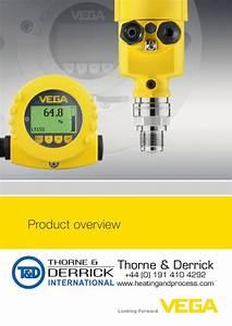 VEGA – Level, Point Level & Pressure Measurement Sensors ...