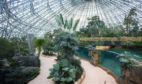 It is accessible by bus from blois train station between april and september according to hours: Zoo De Beauval Nouveauté 2021