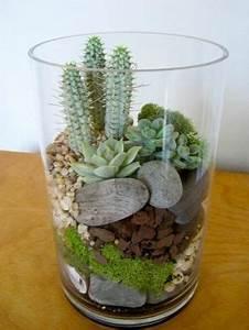 Pflanzen Für Terrarium : wie baue ich ein terrarium pflanzen und passende glasgef e terrarium ~ Orissabook.com Haus und Dekorationen