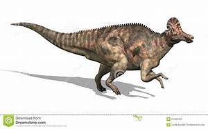 Corythosaurus Dinosaur Stock Photos - Image: 21595703