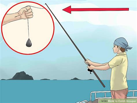 grouper catch wikihow through