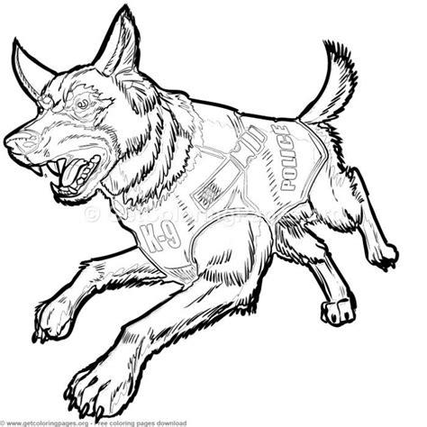 police   german shepherd dog  bulletproof vest