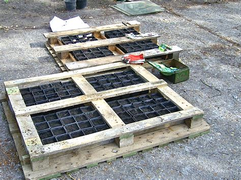 Be Innovative  Alleviate Hunger With Pallet Gardening (st