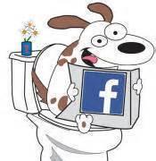 pooper scooper service dog waste removal service