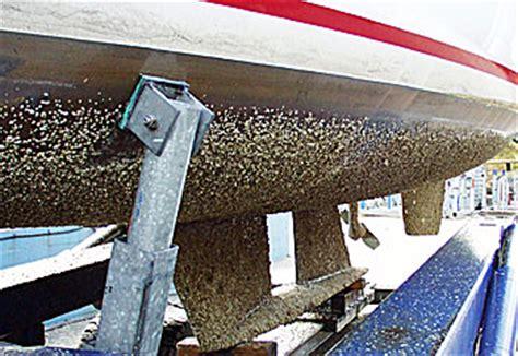 Aangroei Polyester Boot Verwijderen by Antifouling Watersport Nieuws Watersportwinkel