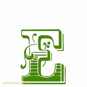 decorative wood type alphabet letters With decorative letter e