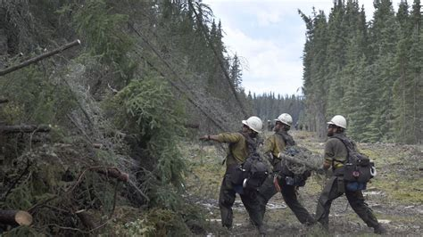 Tetlin River Fire now 50 percent contained, forestry ...