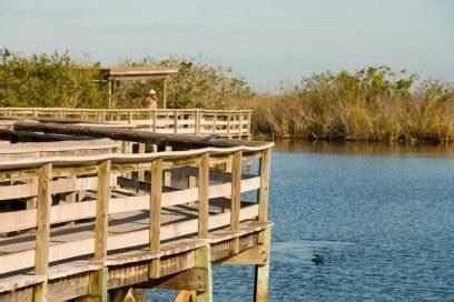 Everglades Airboat Tour Kosten by 11 Florida Tipps F 252 R Fortgeschrittene Der State