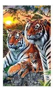 Animals Of The Jungle, Tiger And Tigress With Two Cubs ...
