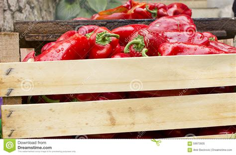 griling peppers bell nobody preview