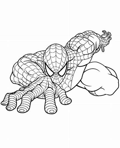 Coloring Spiderman Pages Spider Superhero Topcoloringpages Spidey