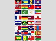 Cruise Ship Registry, Flags of Convenience, Flag State