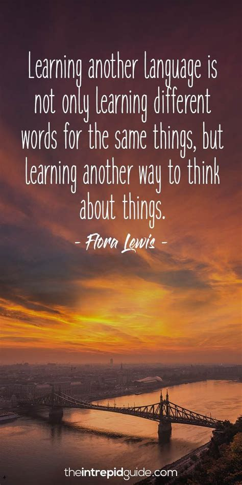 awesome inspirational quotes  language learners