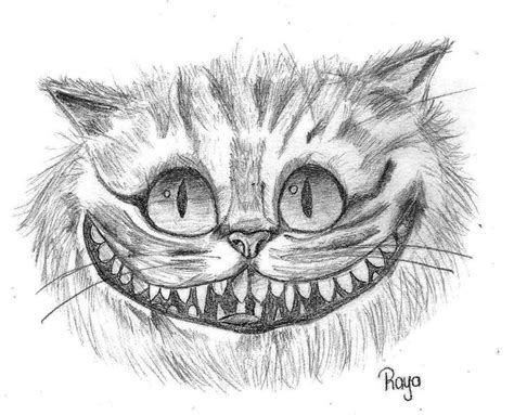 drawn cheshire cat face pencil   color drawn