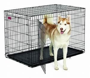 Grande Cage Pour Chien : cages pour chien midwest s parteur inclus garantie 1 an ~ Dode.kayakingforconservation.com Idées de Décoration
