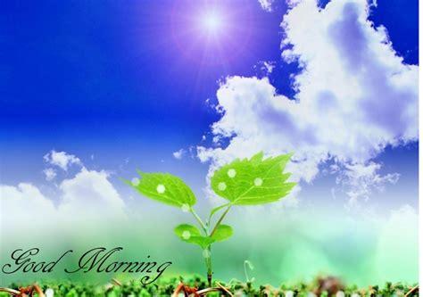Permalink to Nature Wallpaper Good Morning
