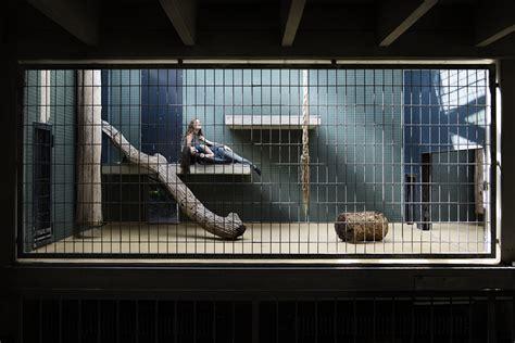 human zoo putting humans  cages shockblast